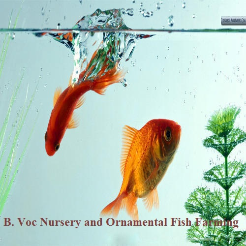 ADDMISSIONS ARE OPEN TO THE NEW UGC- AIDED B.VOC COURSE(NURSERY AND ORNAMENTAL FISH FARMING)